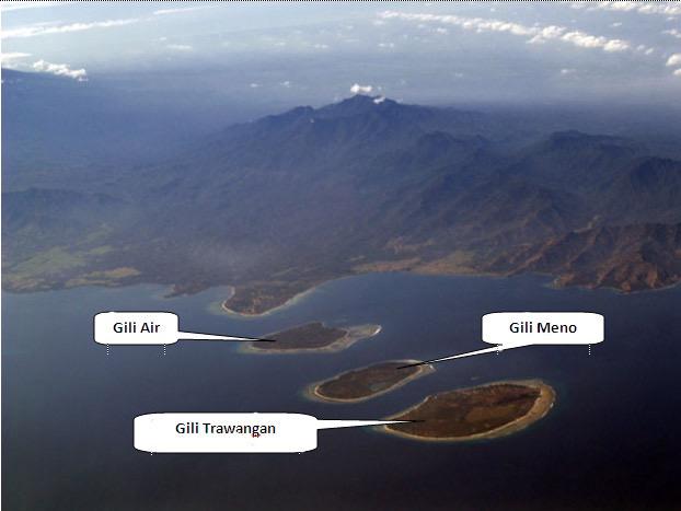 The three Gilis