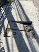 pavement 6