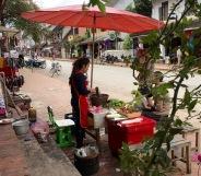 The making of spicy green papaya salad (Tam Mak Houng)