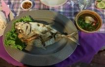 Fish it is!