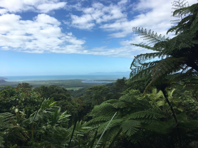 View on the way to Cape Tribulation